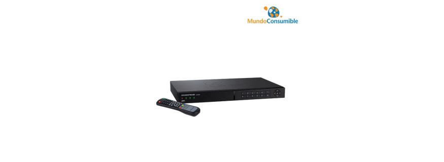 Videograbador IP